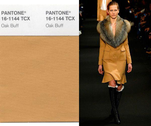 Оттенок Oak Buffв одежде