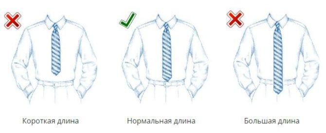 Правильная и неправильная длина галстука