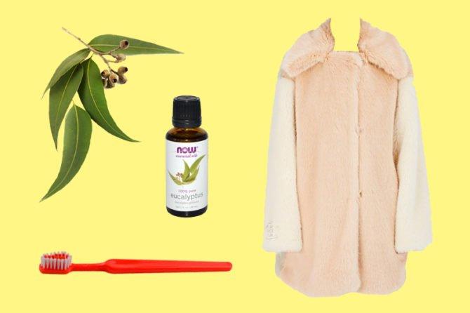 Меховое пальто, зубная щётка и эвкалиптовое масло