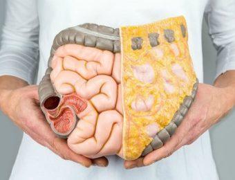 Как быстро и эффективно очистить кишечник от шлаков и токсинов